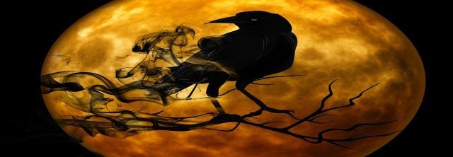 corbeau monde