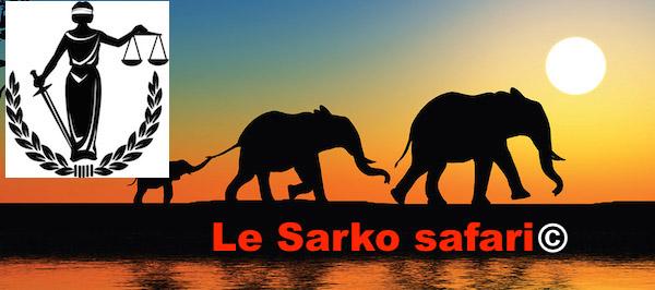 A Safari