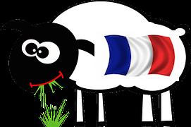 aa mouton fr
