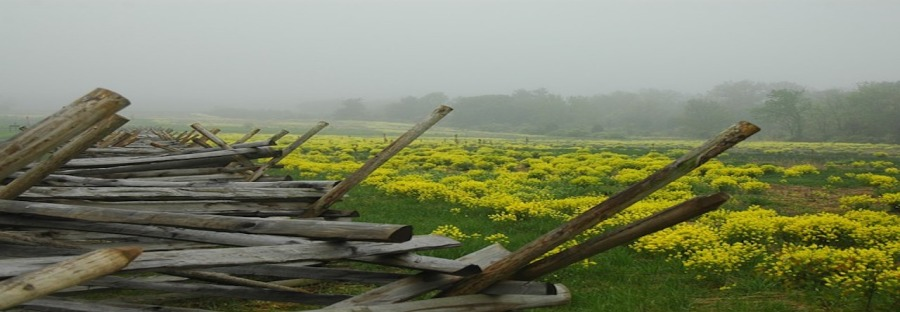 gettysburg-350051_640