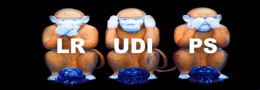 monkey-557586_640 - copie