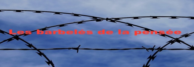 barbed-wire-235760_960_720