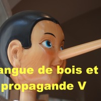 Langue de bois et propagande V