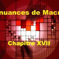 50 nuances de Macron XVII