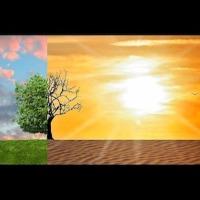 La Fake News du siècle : le réchauffement climatique