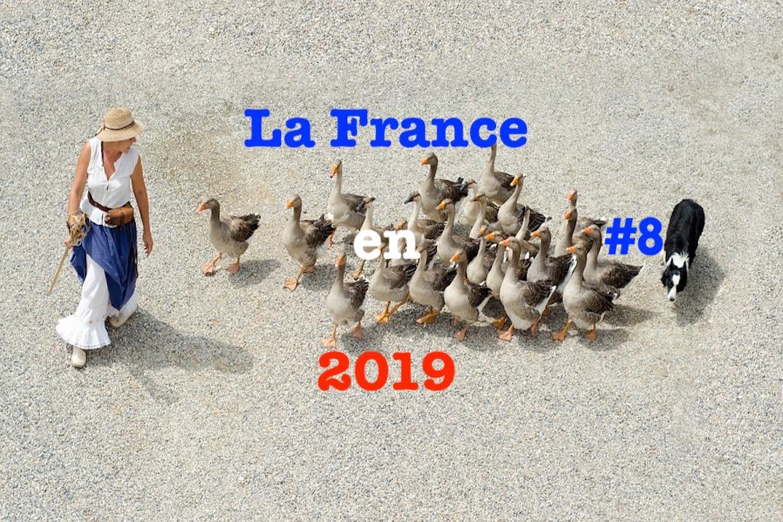 La France en 2019 #8