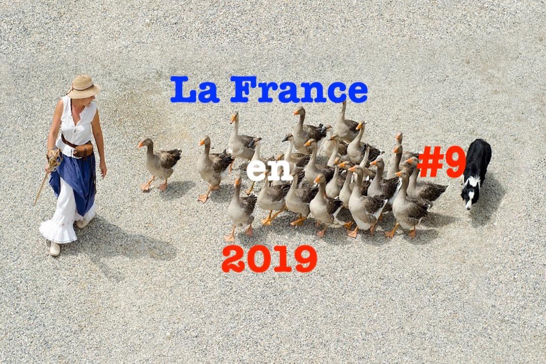 La France en 2019 #9