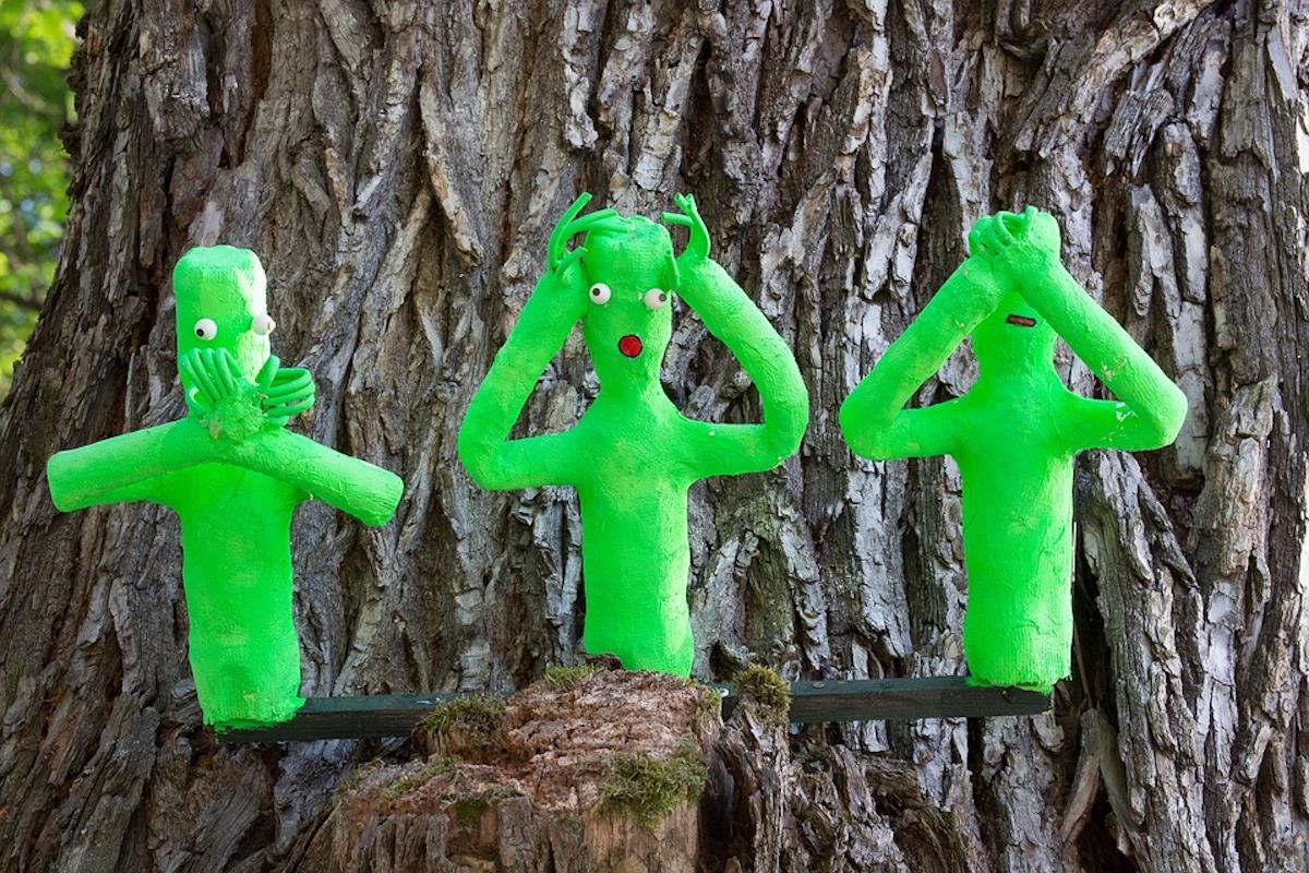 Le Sapin de Noël ne cache plus la forêt de l'imposture EELV !
